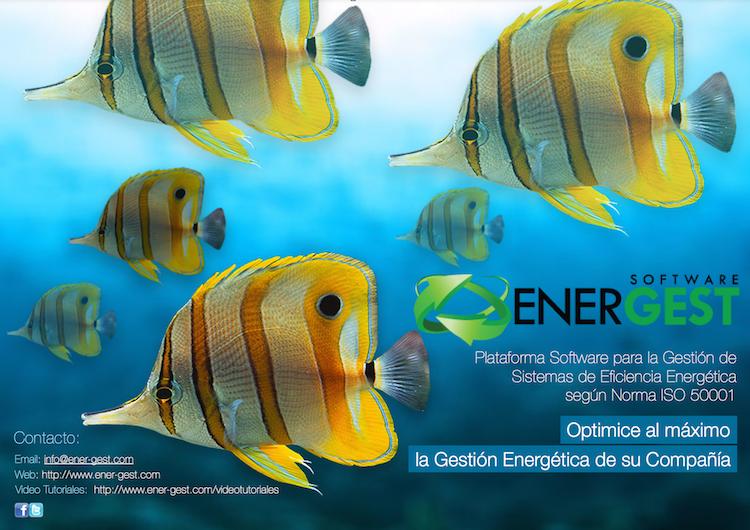 EnerGest Brochure page 1